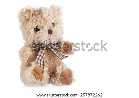 Teddy-bear toy isolated on a white background.