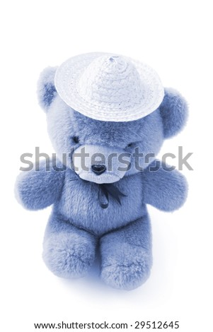 Teddy Bear Wearing Straw Hat on White Background