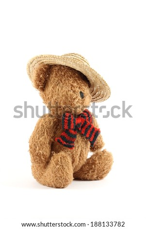 Teddy bear with a straw hat - stock photo