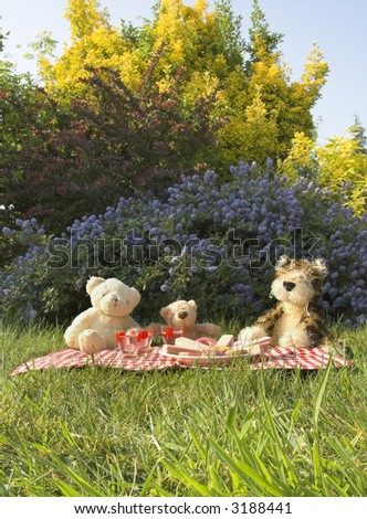 teddy bears picnic - stock photo