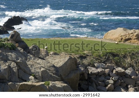 Teeing ground of golf course by ocean (study in immobility and motion) - stock photo
