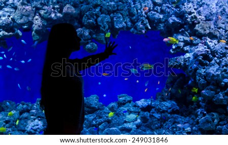 Teenage girl admire coral fishes in aquarium - stock photo