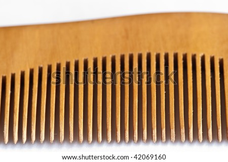 teeth of a comb of bamboo wood