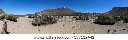 Teide National Park in Spain - stock photo