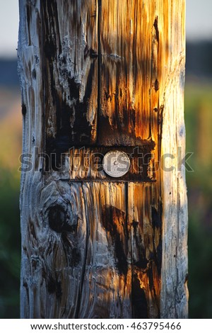 Telephone pole.