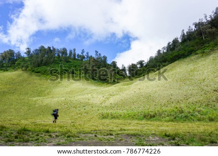 teletubbies hill and field at tengger semeru, indonesia