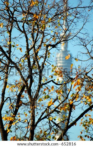 television tower, trees
