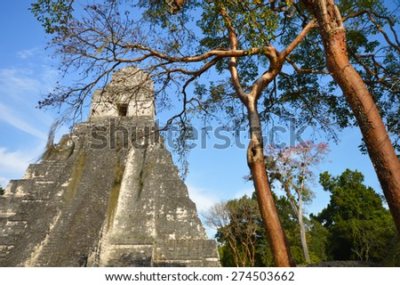 Temple I of the archeological site of Tikal in Peten Department of Guatemala - stock photo
