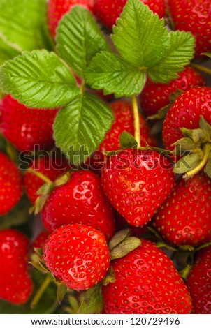 Tempting strawberries with leaves - background - stock photo