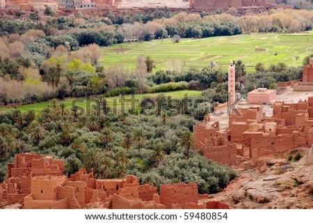 Tenehir Oasis and kasbah - stock photo