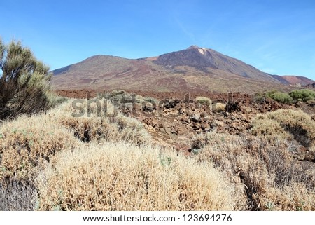 Tenerife, Canary Islands, Spain - volcano Teide National Park. Mount Teide, UNESCO World Heritage Site.