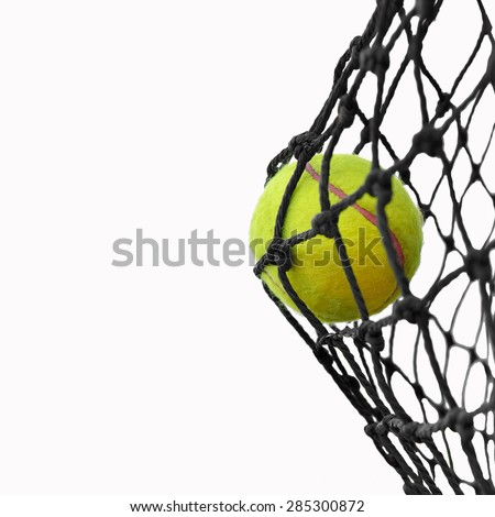 Tennis ball in net isolated on white background , This has clipping path.