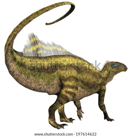 Tenontosaurus Profile - Tenontosaurus was an ornithopod herbivorous dinosaur that lived during the Cretaceous Period of North America.
