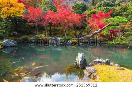 Tenryu-ji garden in fall, Arashiyama, Kyoto, Japan - stock photo