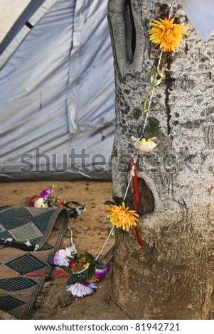 Tent with flowers - stock photo