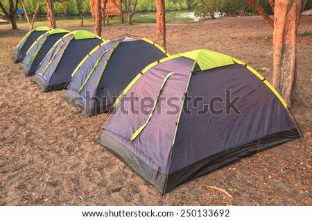 Tents row on pine forest sea beach - stock photo