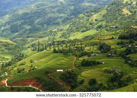 Terraced fields in Hoang Su Phi, Ha Giang, Vietnam.