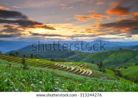 Terraced rice and landscape  Chiang Mai, Thailand - stock photo