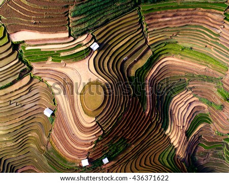 Terraced rice field in water season in Mu Cang Chai, Vietnam.