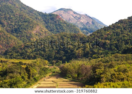 Terraced rice on Mountain, Nan Province, Northern of Thailand. - stock photo