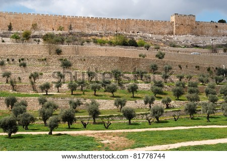 Terraces of the Kidron Valley and the the wall of the Old City in Jerusalem - stock photo