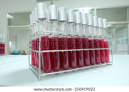 test tube  contain red media for microorganism in microbiology laboratory  - stock photo