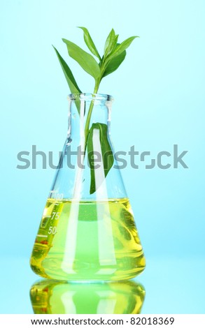test tube with plants on blue background