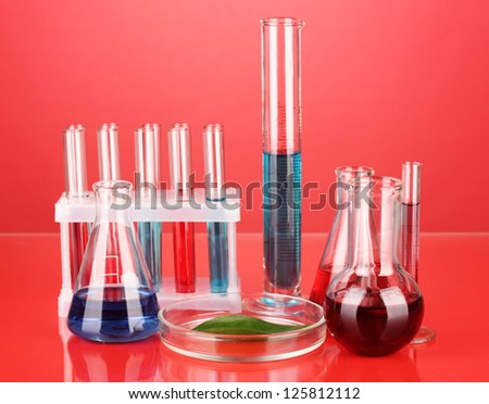 Test-tubes and green leaf tested in petri dish, on color background - stock photo