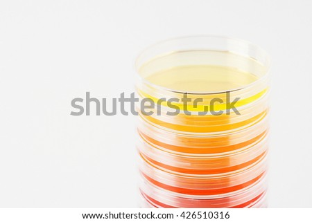 Tests in laboratory with colorful liquids