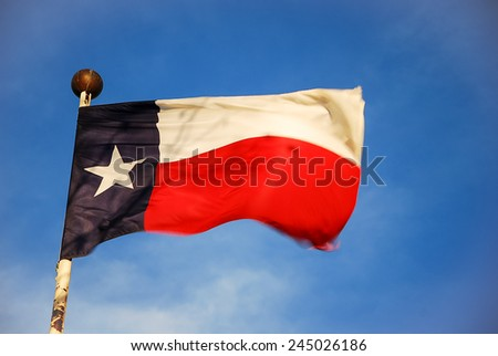 Texan flag waving.  - stock photo