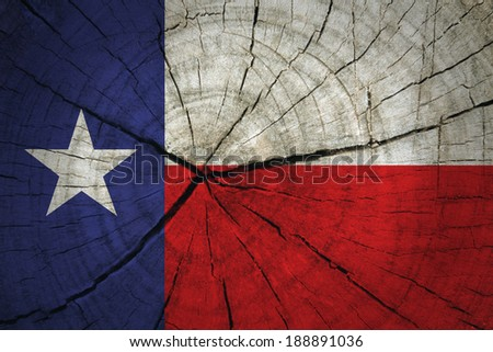 Texas State Flag painted on wood texture  - stock photo