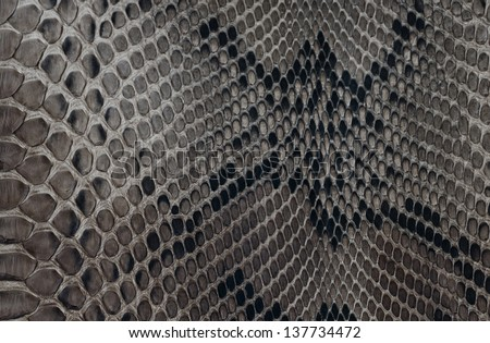 Texture background black and white snake leather