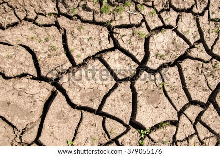Texture, background, desert, wilderness, waste, sands, wilds, sahara. texture of dry land. Dry cracked earth background. land with dry cracked ground. Land with dry and cracked ground. - stock photo