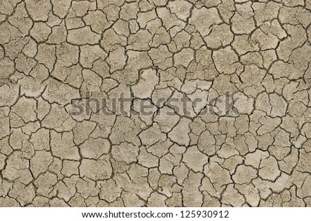 Texture cracked earth