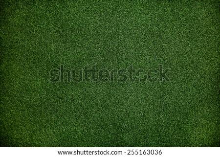 Texture Dark Green Grass Surface Closeup Wallpaper Concept - stock photo