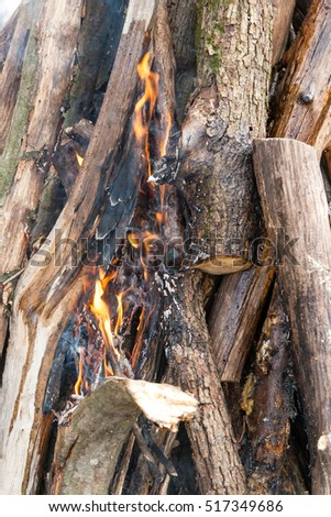 texture flame from burning logs at night
