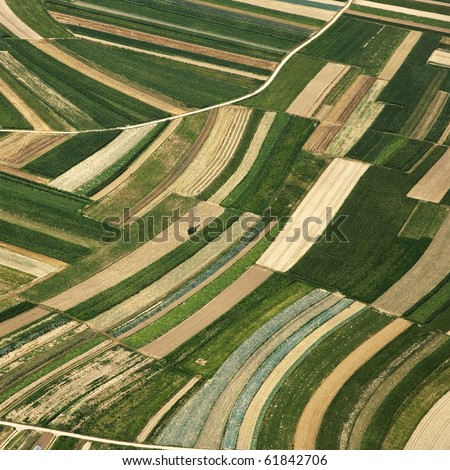 texture of above, aerial summer field - stock photo