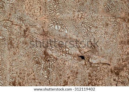 Texture of an rusty metal