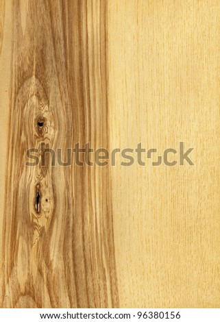 Texture of ash tree (high-detailed wood texture series)