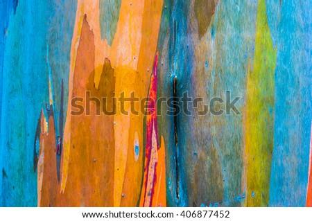 Texture of Eucalyptus wood surface got water drop - stock photo