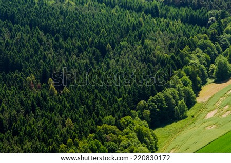 Texture of forest in an aerial view - stock photo