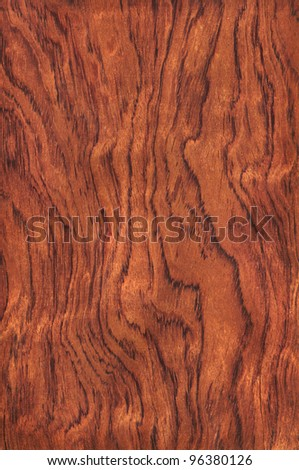 Texture of guibourtia (high-detailed wood texture series) - stock photo