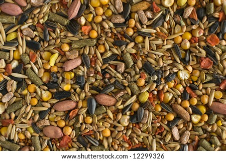 Texture of hamster fodder: peanuts, sunflower seeds and other