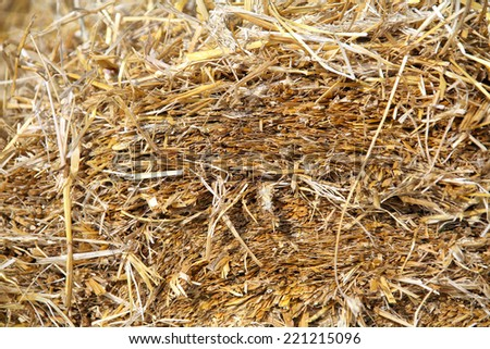 texture of harvested bales of straw closeup - stock photo