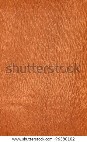 Texture of lacewood (high-detailed wood texture series)