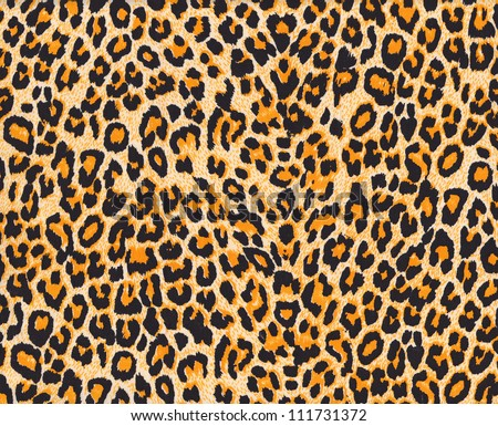 Texture of leopard skin background - stock photo