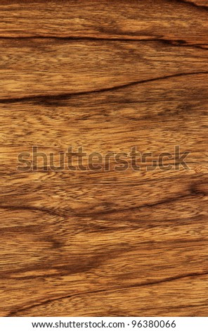 Texture of ophra (high-detailed wood texture series)