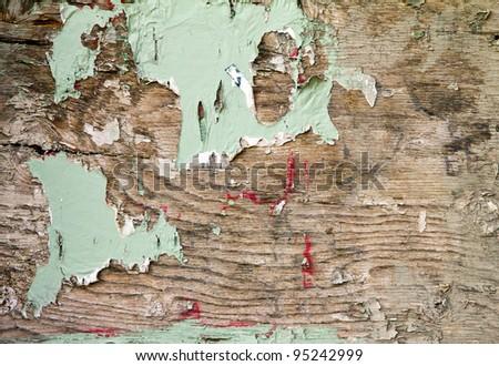 Texture of peeling paint on grungy old wood - stock photo