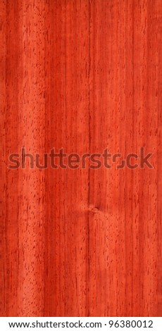 Texture of pterocarpus (high-detailed wood texture series)