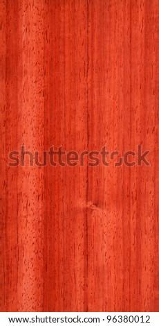 Texture of pterocarpus (high-detailed wood texture series) - stock photo